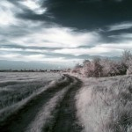 infrared_photography_3